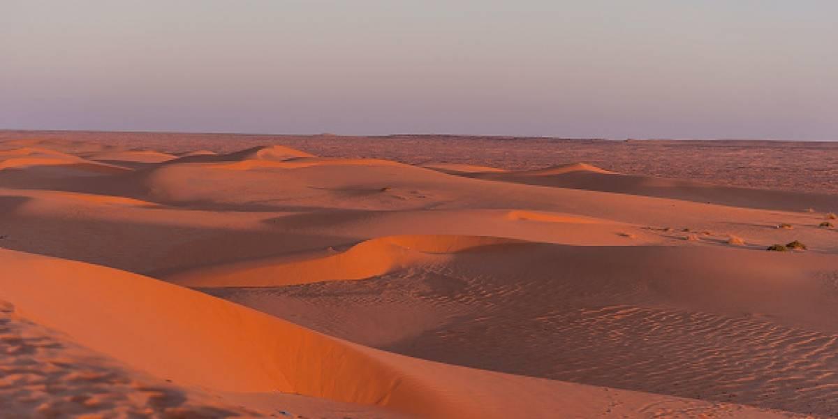 Ahora es el desierto más caluroso del mundo: estudio confirma que el Sahara fue hogar de criaturas marinas gigantescas