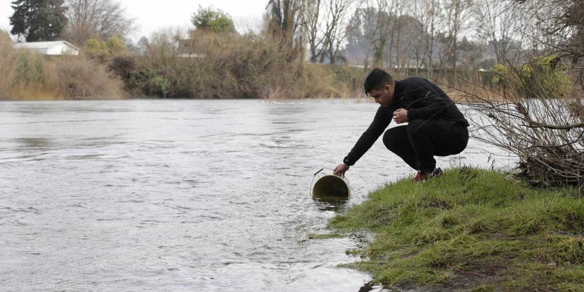 Descontrol en Osorno: gente se abastece de agua robada del Hospital San José y del contaminado río Rahue