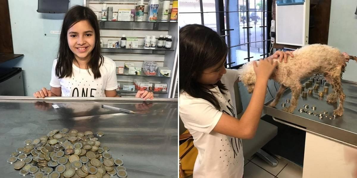 ¡Gran ejemplo! Pequeña niña gastó sus ahorros para salvar la vida de perrita abandonada