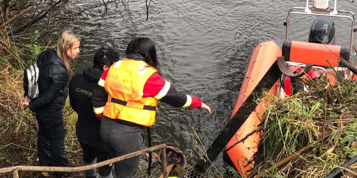 "Osorno: Essal ""no informó oportunamente"" que derrame de petróleo alcanzó el río Rahue"