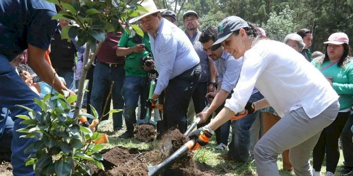 'Con buena voluntad' de vecinos conservan 165 zonas recuperadas en los sábados de tequio