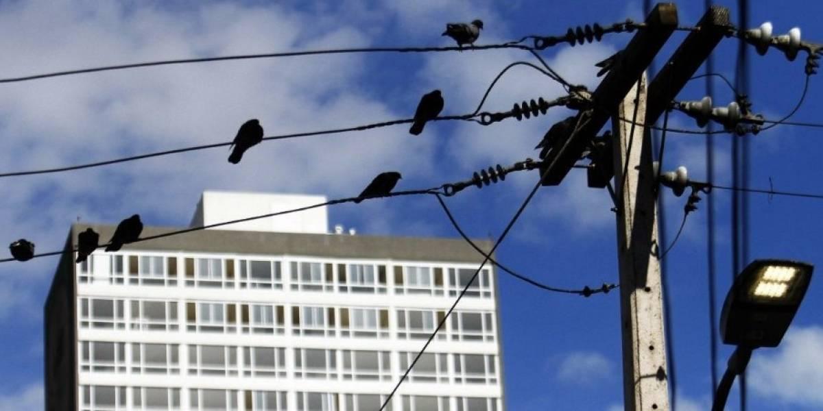 Piñera firma proyecto para cambiar ley de arriendo: ¿Qué beneficios trae para arrendatarios y arrendadores?