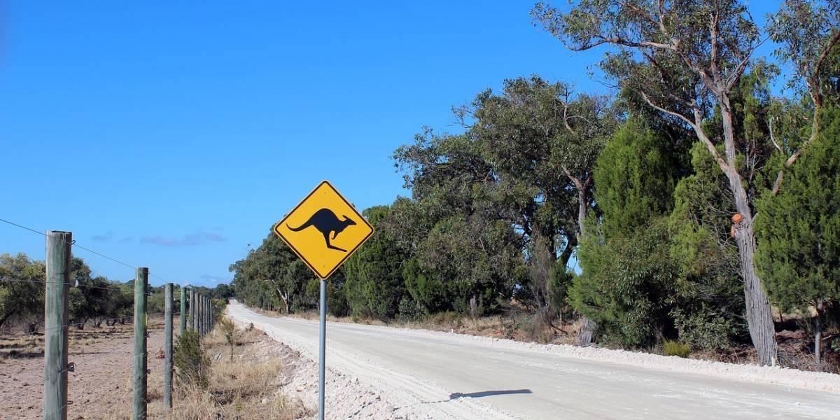 Grupo de crianças rouba carro e dirige por mil quilômetros na Austrália
