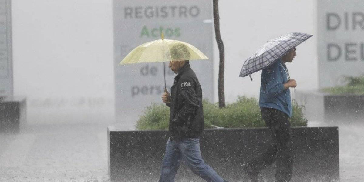 Lluvia causa inundaciones, encharcamientos y caída de árbol en CDMX