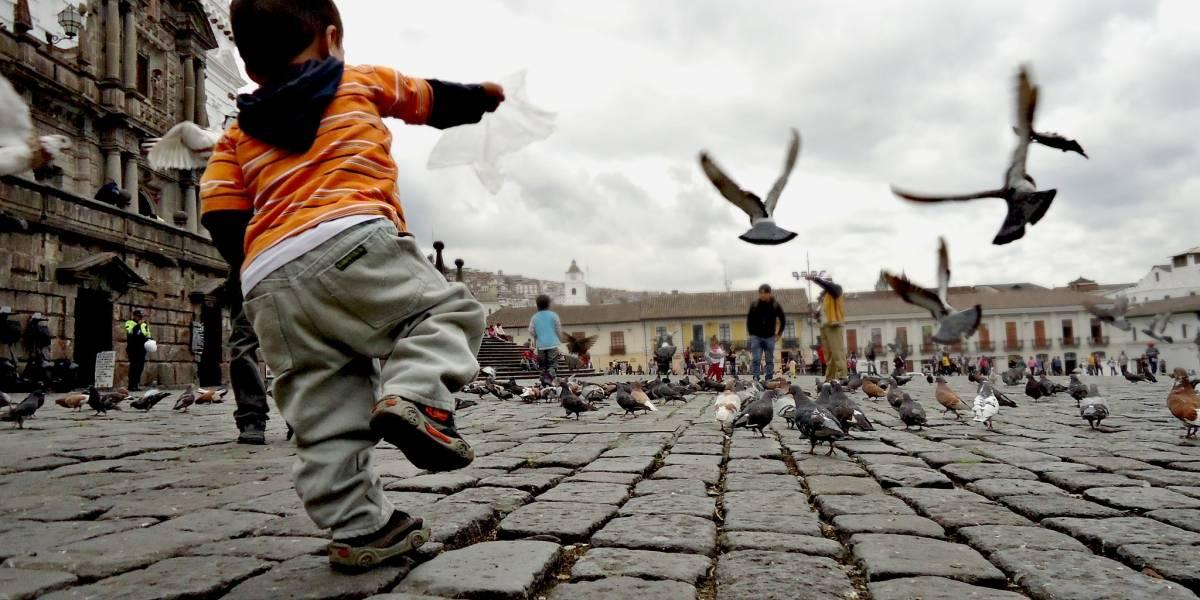 Verano de las Artes 2019 incluirá recorridos especiales en el Centro Histórico