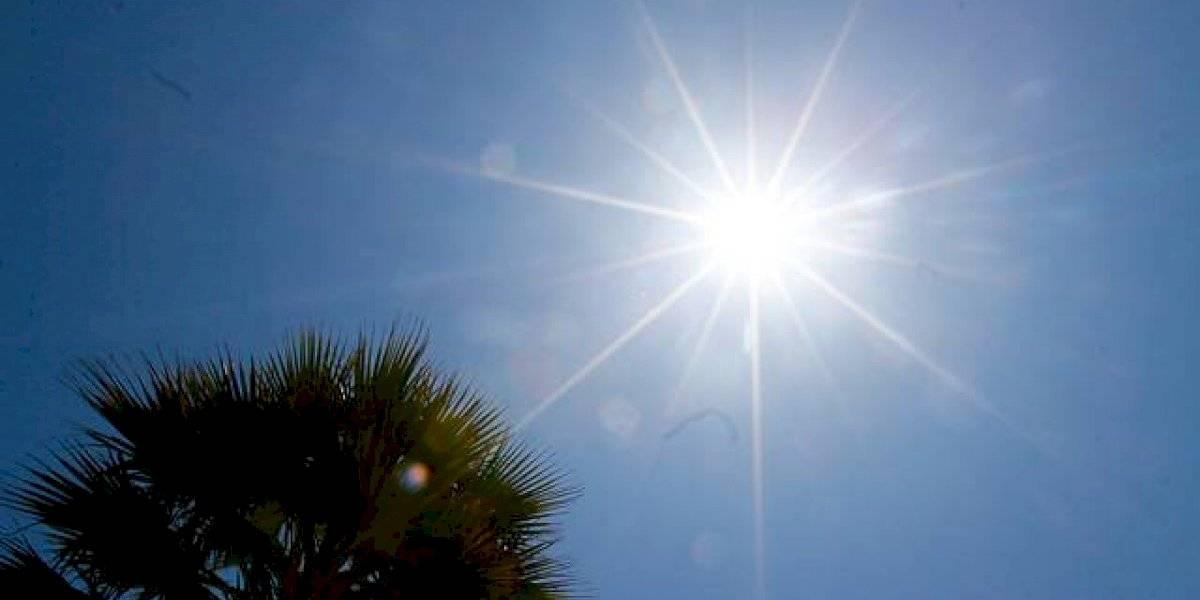 Hemos hecho todo mal: declaran que junio  fue el mes más caluroso en el mundo en los últimos 140 años