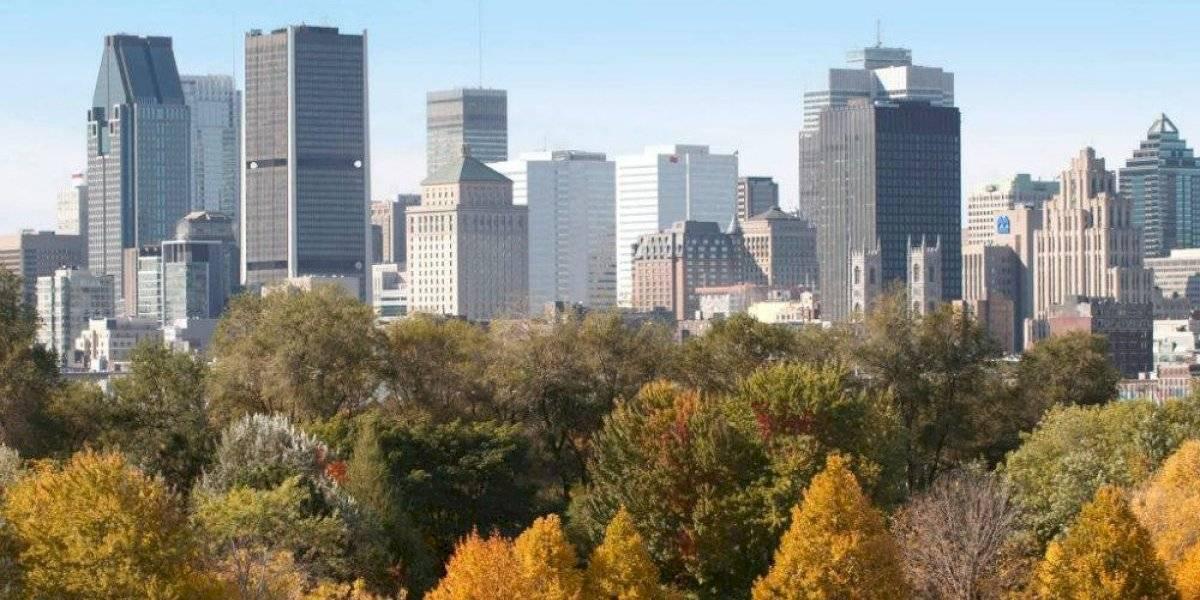 Canadá busca a diseñadores, ingenieros y operadores mexicanos