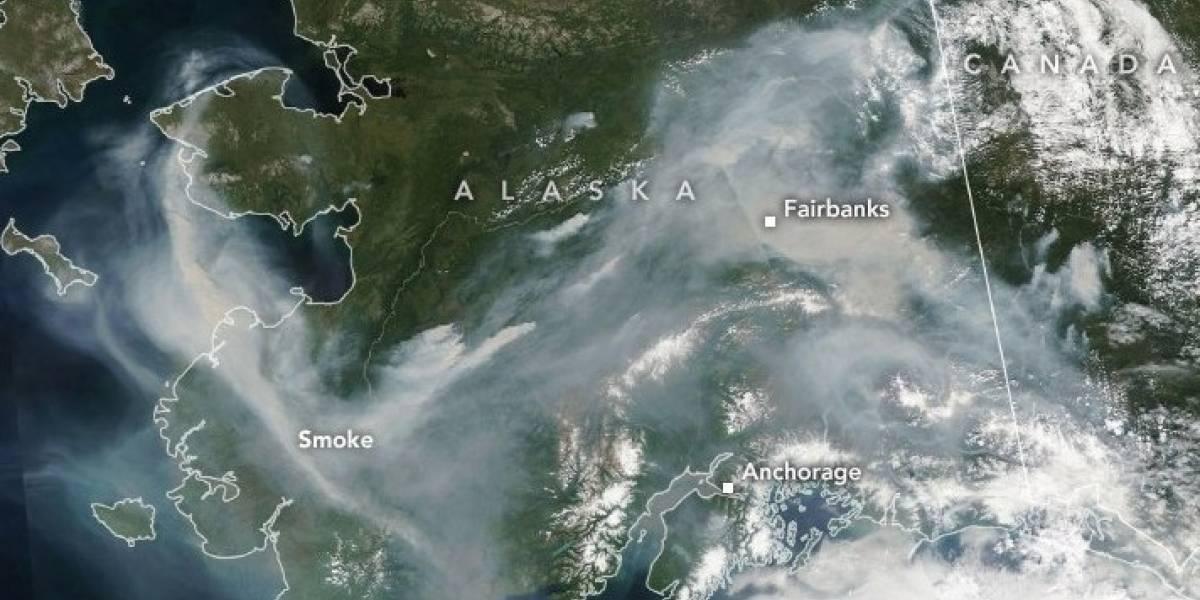 Desastre ecológico en el ártico: las impactantes imágenes satelitales de los incendios en el círculo polar producto de las altas temperaturas
