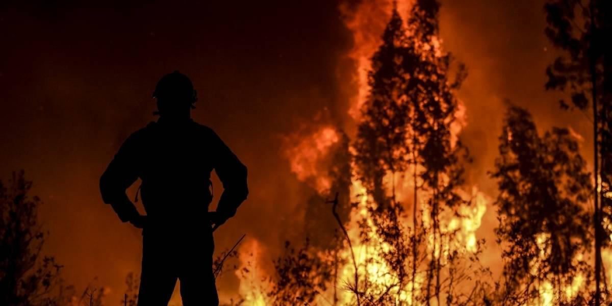 FOTOS. Cientos de bomberos luchan contra gigantesco incendio en Portugal