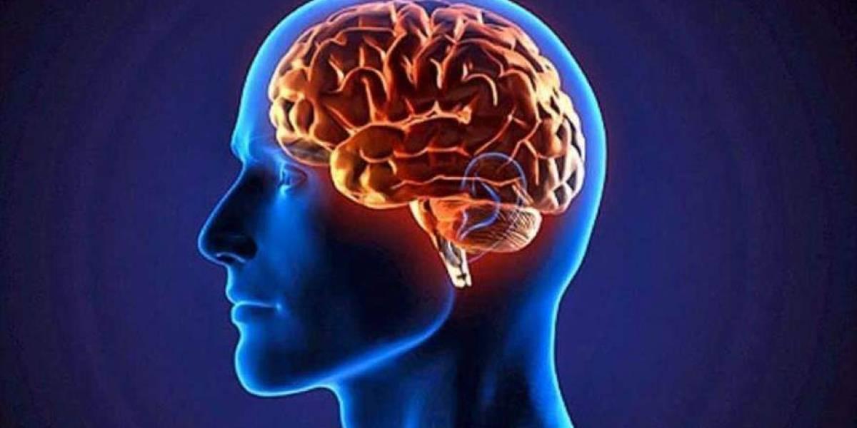 Sin abrir el cráneo: Tumores cerebrales ahora se pueden extirpar con rayos gamma