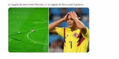 Perro invade partido en liga colombiana para hacer sus necesidades