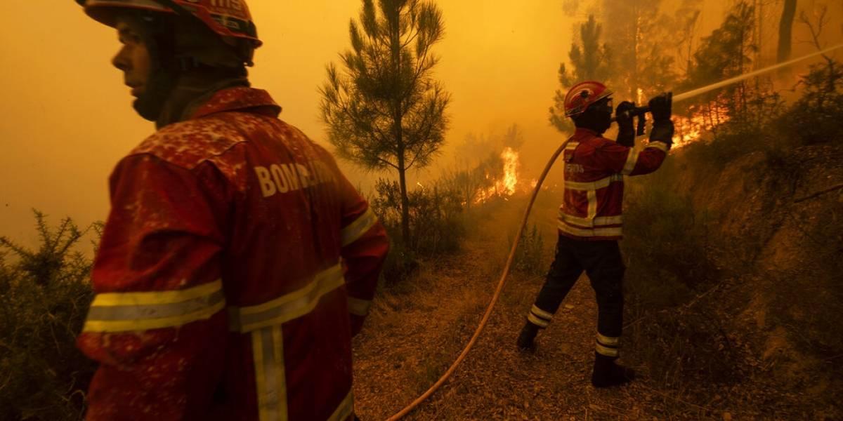 Portugal: tras cuatro días en llamas logran apagar megaincendio forestal