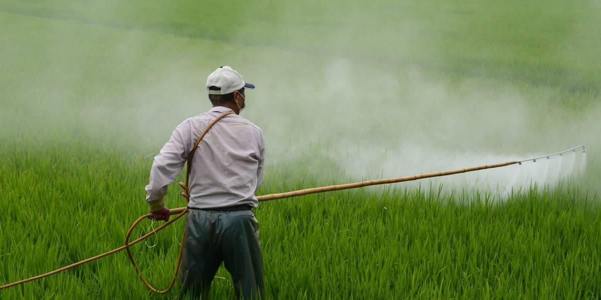 Anvisa aprova novas regras de rotulagem de agrotóxicos