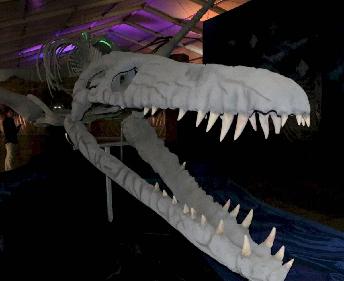Parque itinerante de dinosaurios