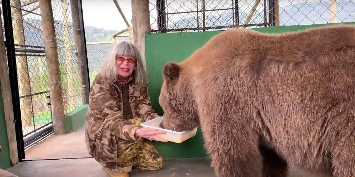Morre Rowena, a 'ursa mais triste do mundo', que inspirou livro de Rita Lee
