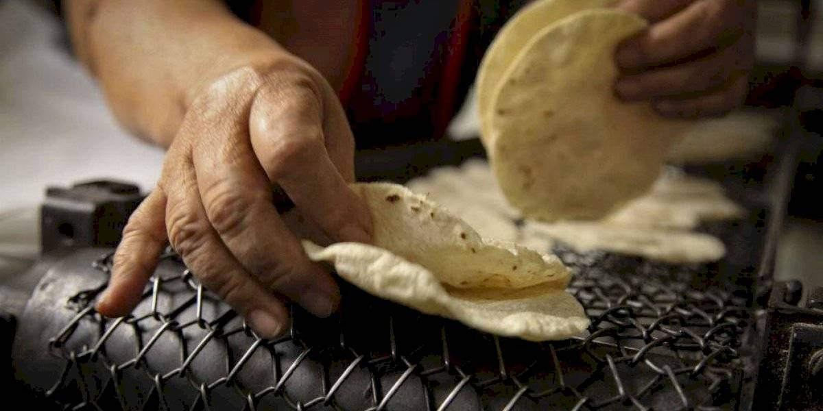 ¿Por qué prohibió Facebook el uso de la palabra tortillera?