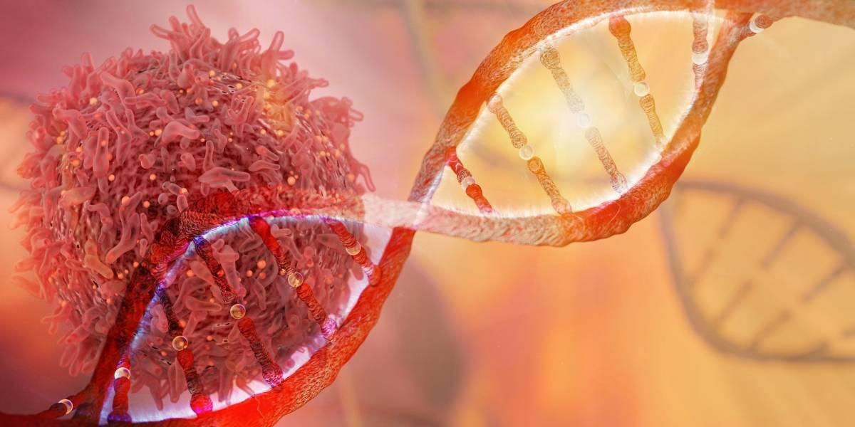 Científicos chilenos desarrollan tecnología que reduce hasta en un 50% el costo de exámenes contra el cáncer