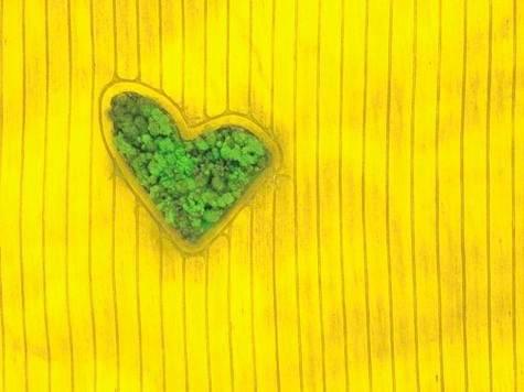 """3 """"Isla de amor"""""""