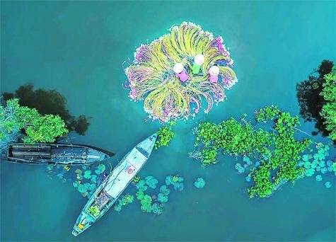 Flores en el agua