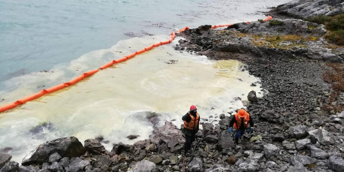 """Emergencia ambiental en la Patagonia chilena: Greenpeace prevé """"consecuencias devastadoras"""" tras derrame de petróleo en Isla Guarello"""
