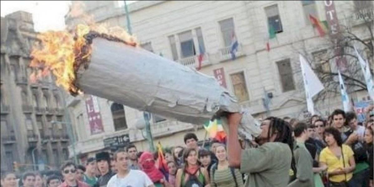 La media volaíta: Nueva York reduce castigos por poseer marihuana