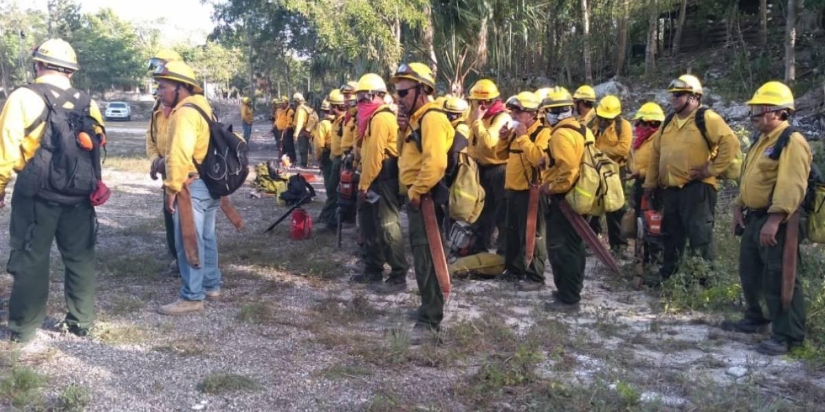 Controlan al 95% incendio en reserva de Sian Ka´an