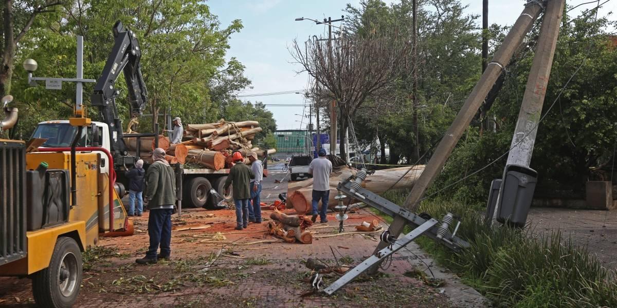 Tormenta del lunes dejó graves daños en la Zona Metropolitana de Guadalajara