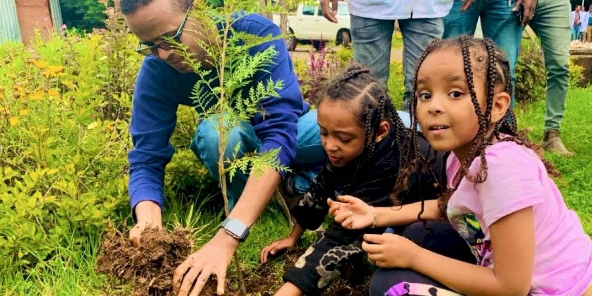 Un ejemplo para el mundo: Etiopía rompe récord tras plantar 350 millones árboles en un día para luchar contra la crisis ambiental