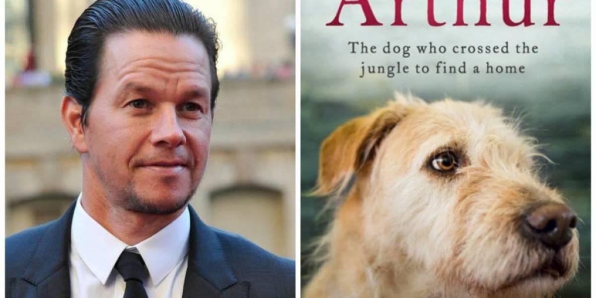Protagonista de 'Ted' será parte de la película del perro ecuatoriano Arthur