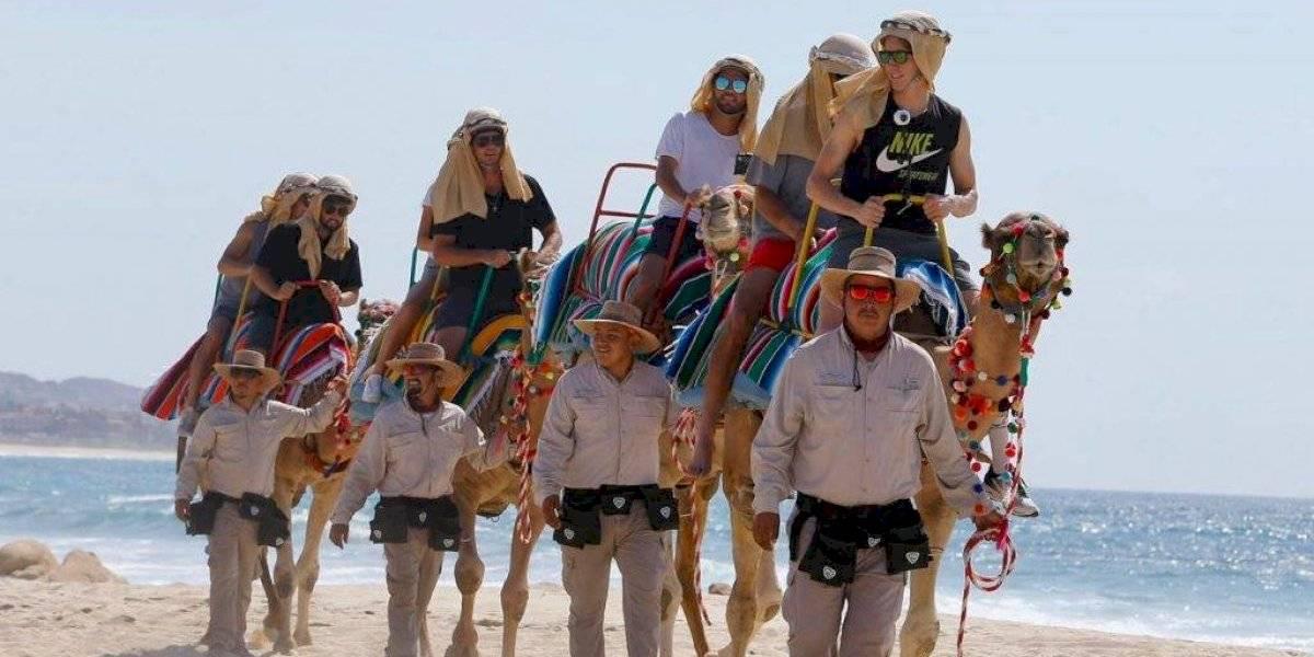 Jugadores del Abierto de Los Cabos dan paseo en camellos