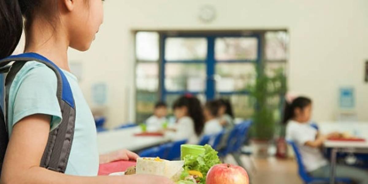 Manatí entregará mil almuerzos diarios a niños y jóvenes
