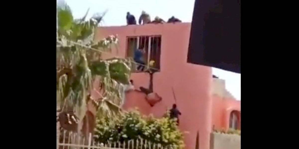 """El viral del momento: ladrón quedó colgado mientras escapaba y la policía lo usó como """"piñata"""""""