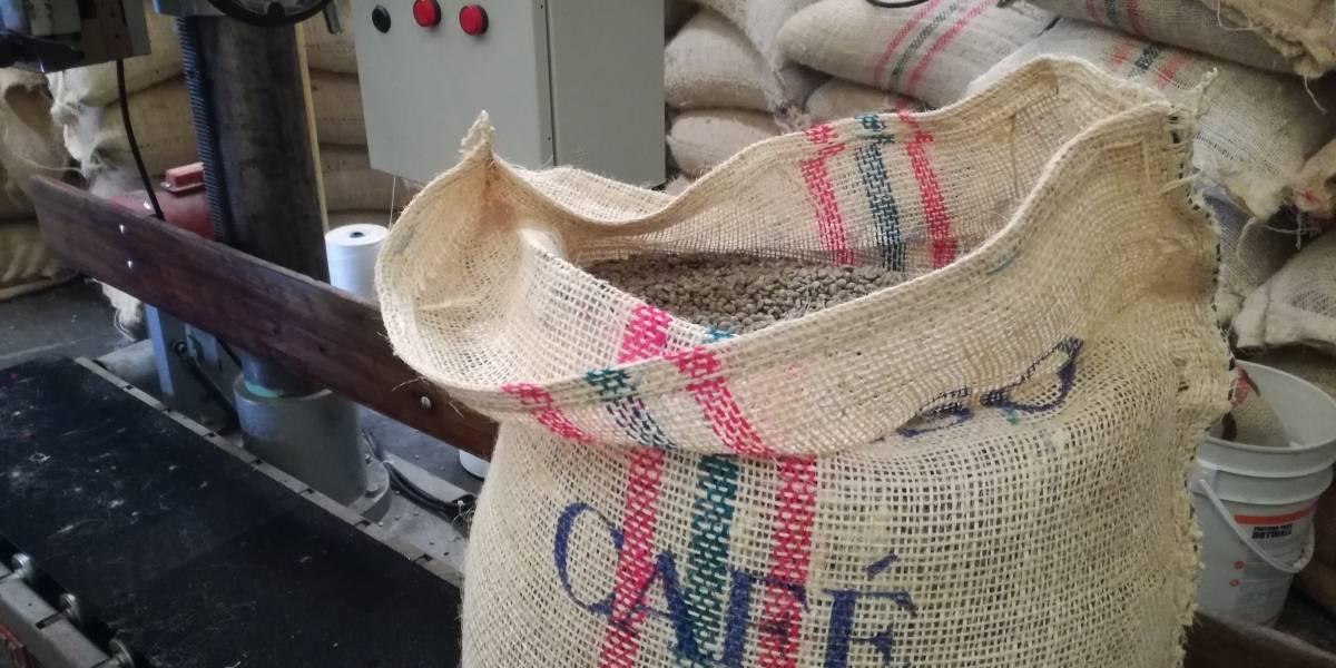 Concurso eligió los tres mejores productores de café en el Valle del Cauca