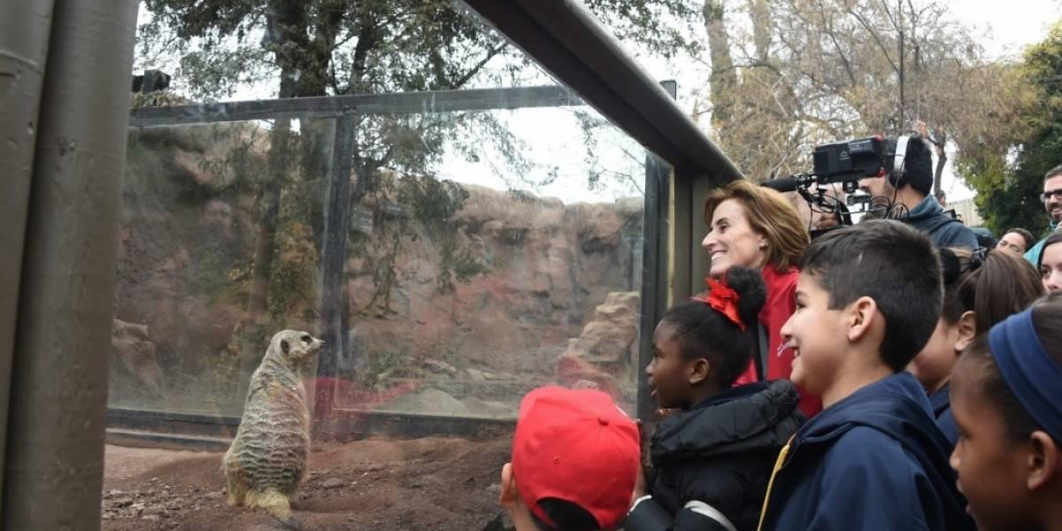 Colegios y liceos de todo el país serán beneficiarios de la gratuidad en el Parque Zoológico Nacional