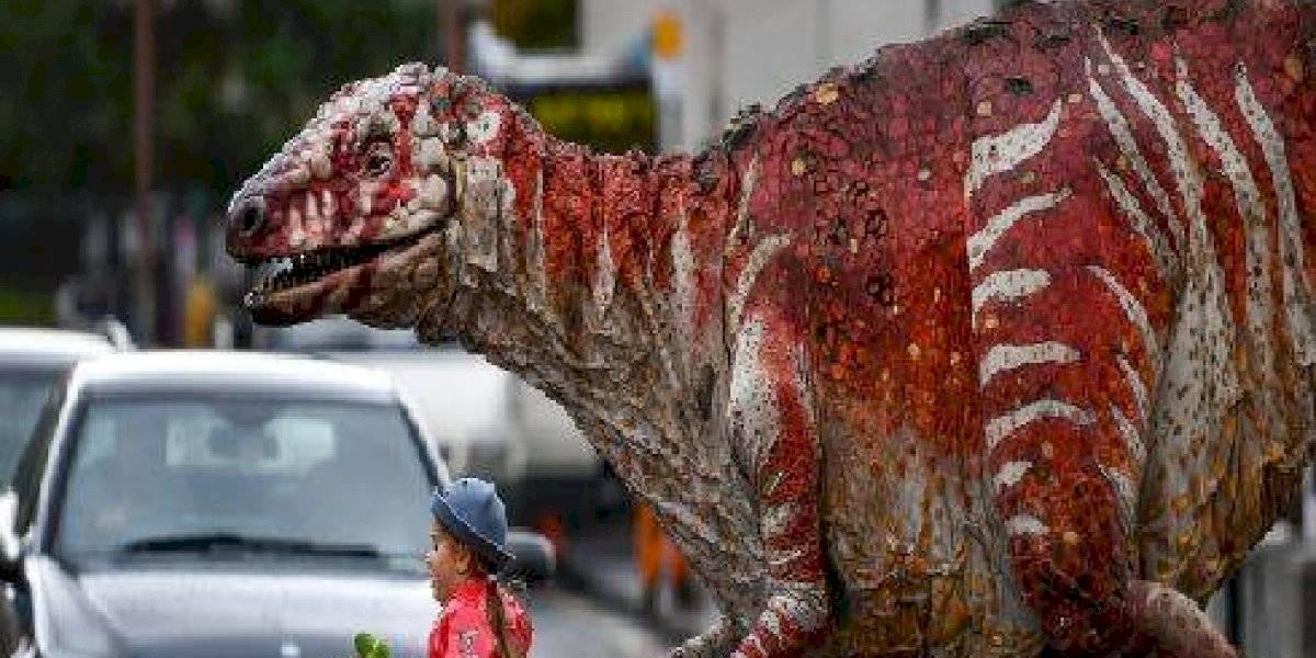 Niña pasea a un aterrador dinosaurio por las calles