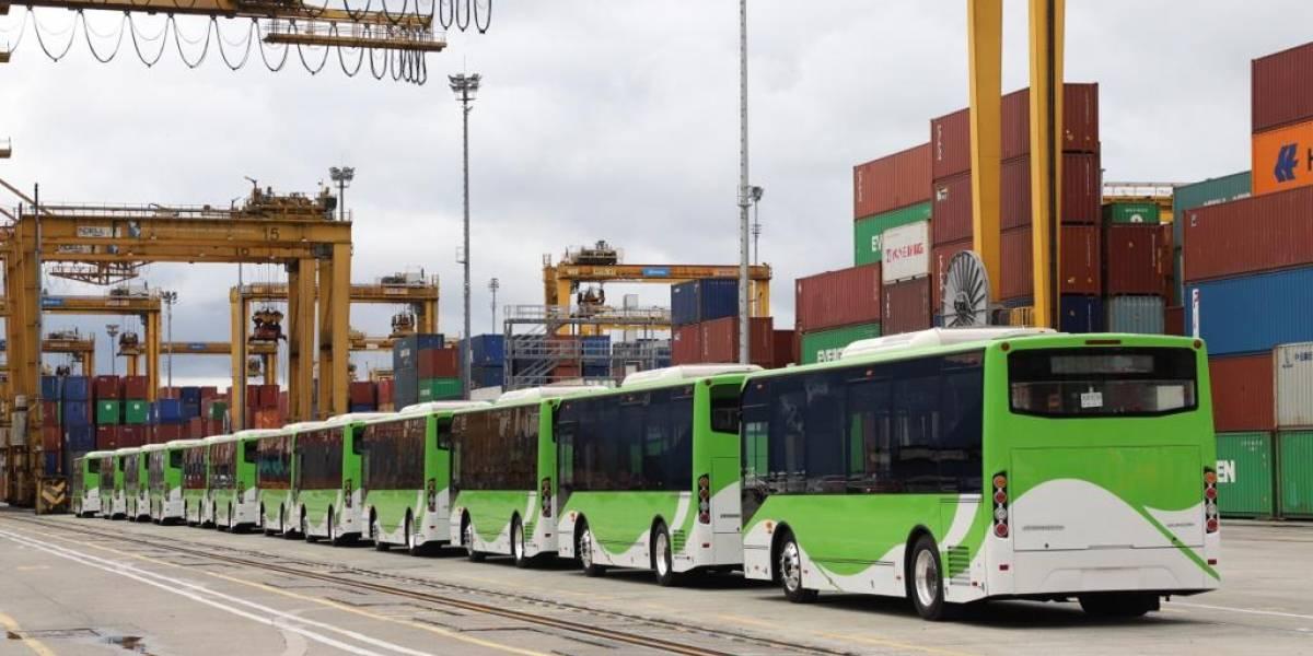 ¡Ya llegaron los buses! Cali será la primera ciudad del país con una flota eléctrica de transporte masivo
