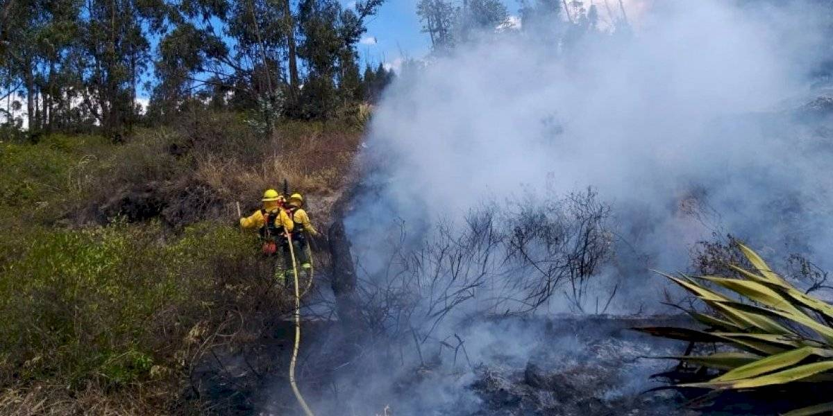 Video: Registran incendio forestal en Carcelén, Quito