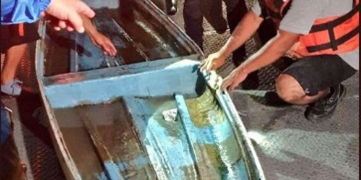 Cuatro personas cayeron al río Guayas y fueron rescatadas