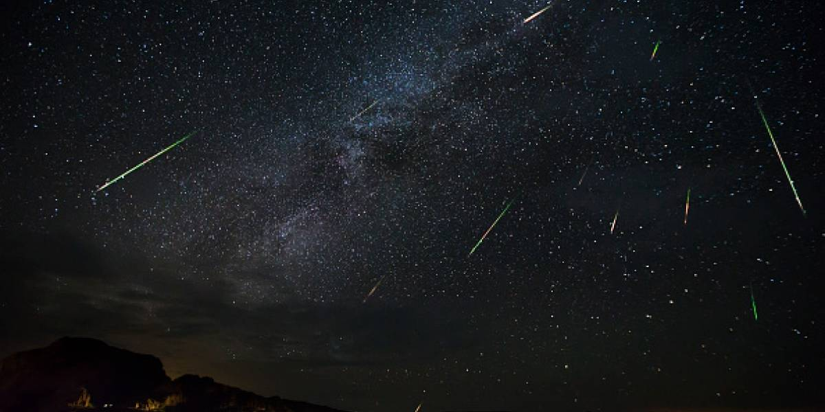 Perseidas 2019: el diminuto insecto que dañó la grabación de la NASA de la lluvia de estrellas