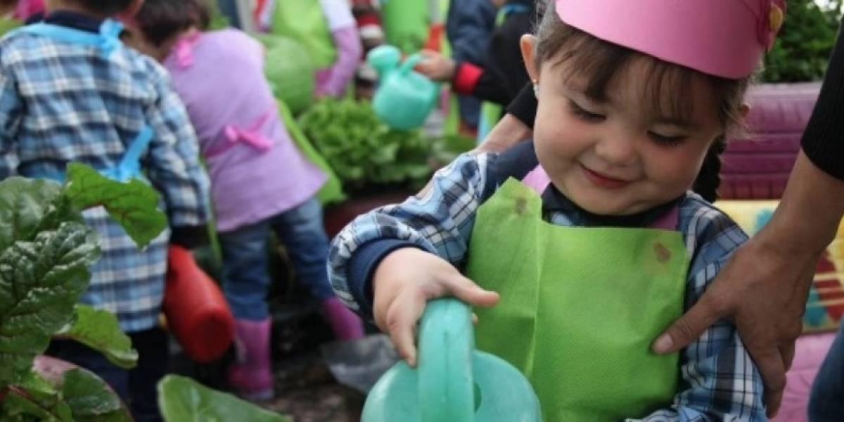 ¡Pilas! Todavía hay más de cuatro mil cupos en jardines infantiles del Distrito