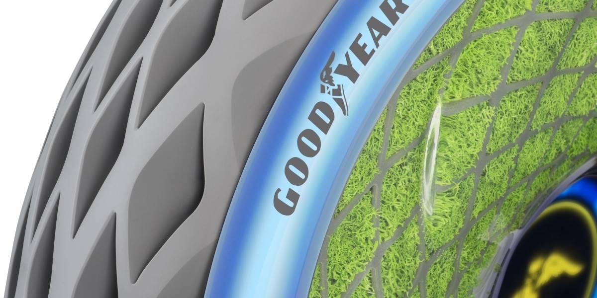 El neumático del futuro Goodyear lo proyecta con musgos vivos en su interior