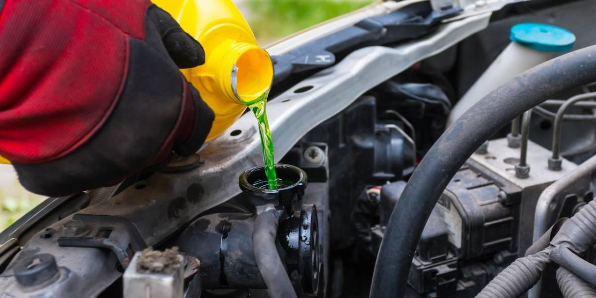 3. Los fluidos del auto: Refrigerante