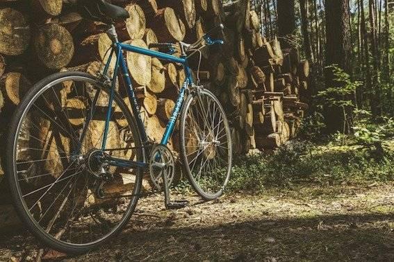 bicicletashipste-1ee62a23b9caa9217379c2a085ca4bc9.jpg