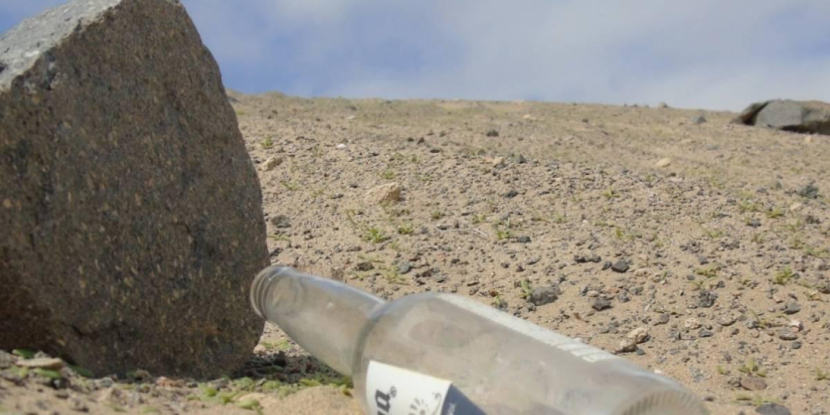 """""""Consecuencias de una botella de cerveza en el Desierto"""": la imagen viral que muestra el daño que el hombre provoca en la naturaleza"""
