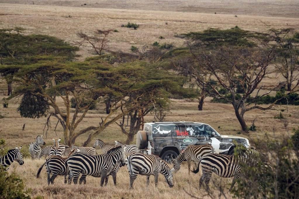 Land Rover Defender 2020 - Borana Kenya - Leones- 2019-2