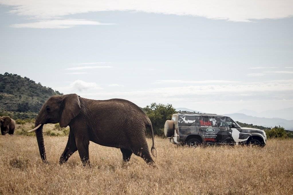 Land Rover Defender 2020 - Borana Kenya - Leones- 2019-3