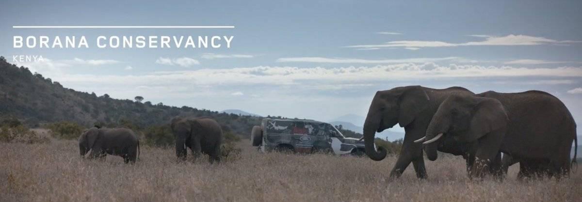 Land Rover Defender 2020 - Borana Kenya - Leones- 2019-12