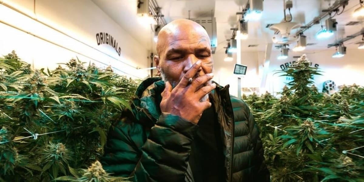 Mike Tyson revela cuánto gasta mensualmente en marihuana