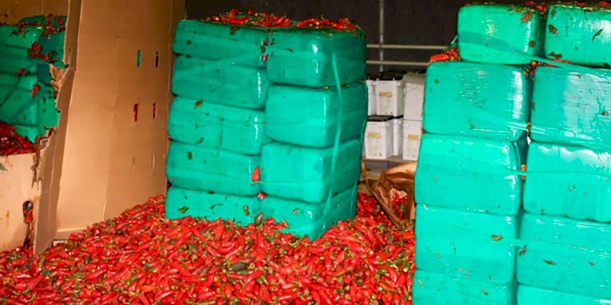 """Picaban"" y ""volaban"": descubren 3,4 toneladas de marihuana oculta bajo miles de jalapeños"