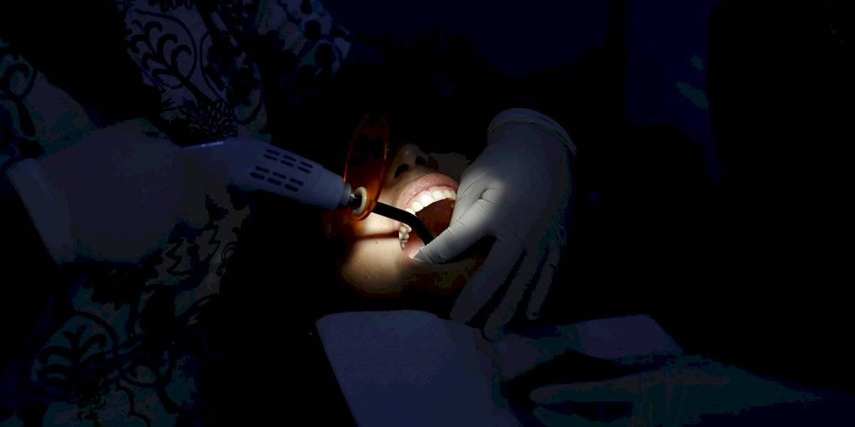 Células madre podrían generar dientes completamente nuevos y reparar los que estén dañados